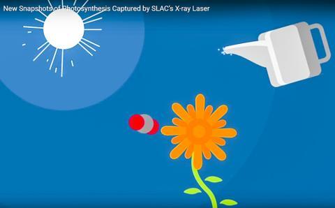 햇빛과 물을 기반으로 한 식물의 광합성 개념도. 동영상 캡처.  CREDIT: SLAC National Accelerator Laboratory
