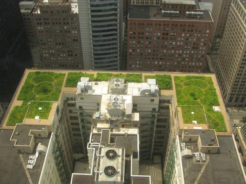 미국 시카고 시청의 녹색 지붕 모습. 시원한 지붕, 가로수와 함께 도심 열 완화기술의 하나다.  Credit: Wikimedia Commons/ TonyTheTiger