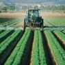유기인산염 사용 살충제 전면 금지 요청