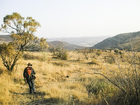 오늘날의 '인류의 요람' 풍경. 연구팀은 과거 특정시기에는 이 지역 환경이 매우 습도가 높고 식물들이 울창했을 것으로 보고 있다.  CREDIT: Robyn Pickering