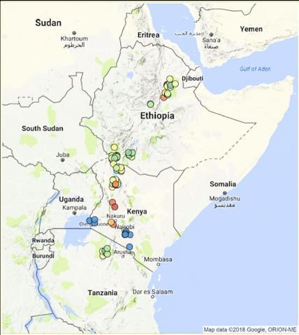 연구팀은 동아프리카 100여 곳 이상에서 나온 풍부한 화석 기록으로 대형초식동물의 장기적 쇠퇴를 추적했다.  CREDIT: J. Tyler Faith