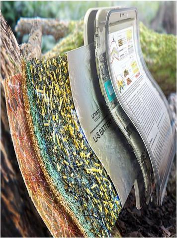 국립산림과학원이 개발한 차세대 리튬-황 종이전지 ⓒ 국립산림과학원 제공