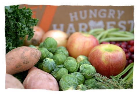 전체 농산물 중 30~40%에 이르는 폐기 농산물을 재활용하기 위해 블록체인 등 첨단 농업테크가 투입되고 있다. 사진은 미국에서 폐기 농산물 재활용으로 성공을 거두고 있는 헝그리 하베스트 사이트.  ⓒhungryharvest.net