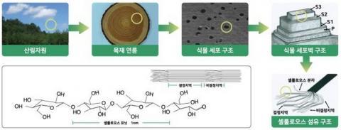 나무로부터 나노셀룰로오스를 생산하는 과정 ⓒ 국립산림과학원