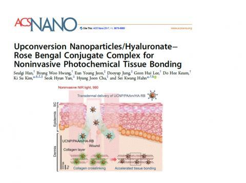 나노분야 국제학술지 'ACS Nano'에 수록된 한세광 교수팀의 연구결과. (사진 =상향변환 나노입자/로즈 벵갈 복합체를 상처 깊숙이 전달하고 빛을 쪼였더니 상처 속 콜라겐이 응집되는 모습)  ⓒ포항공과대학교