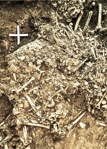 최초의 전염병으로 사망한 것으로 보이는 5000년 전의 20세 된 고대 여성 유해가 있는 곳. 그녀는 유럽 신석기 사회의 붕괴를 이끈 것으로 여겨지는 전염병 희생자 중 한 사람이었다.  CREDIT : Karl-Göran Sjögren / University of Gothenburg