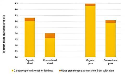스웨덴에서 유기농으로 생산된 밀과 완두콩의 기후변화 영향을 재래 농법과 비교한 도표. 스웨덴 농무성 통계를 기반으로 2013~15년 사이 유기농과 재래농의 헥타르당 산출량을 표시했다.  CREDIT : Stefan Wirsenius/Chalmers University of Technology, Sweden