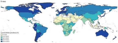 국가별로 남성의 음주율을 나타낸 지도다. 우리나라는 80%가 넘어 술을 많이 마시는 나라에 속한다.  ⓒ 랜싯