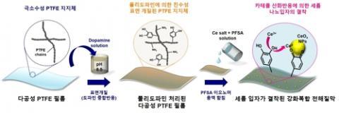 다공성 테플론(PTFE) 지지체를 도파민으로 만든 고분자물질인 폴리도파민(polydopamine)으로 코팅하고, 그 위에 수소이온 전도성을 갖는 PFSA 고분자가 스며든 형태의 강화복합 고분자 전해질막을 만들었다.  ⓒ 한국과학기술연구원 제공
