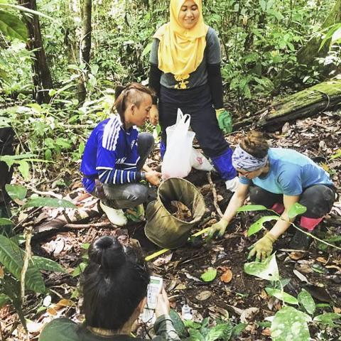 연구팀이 현지지원팀과 함께 열대우림 바닥에서 깔린 잎들을 모으고 있다. 이 표본들은 깔린 잎들에서 살고 있는 무척추동물을 관찰하는데 사용된다.  CREDIT : @The University of Hong Kong