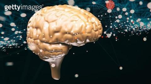 뇌 신경세포 시스템 ⓒ 게티이미지뱅크