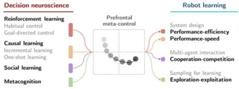 외부 환경에 따라 성능·효율·속도 문제 균형점을 찾는 뇌기반 강화학습 이론(왼쪽)과 최적 제어하는 '전두엽 메타 제어' 이론 설명도