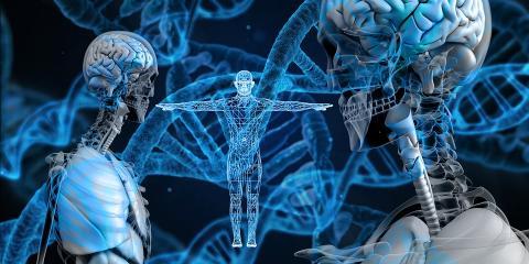 유전체 등 오믹스 분석을 통해 개인별로 특정 질병으로 이환될 확률과 약물의 효과 등을 미리 예측할 수 있다. ⓒ pixabay / ScienceTimes