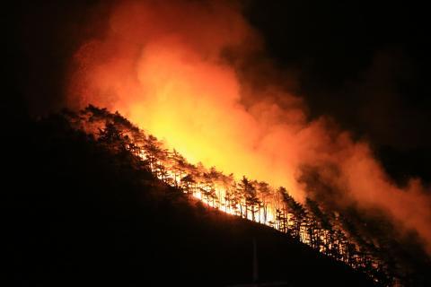 새해 첫날 강원 양양군의 한 야산에서 산불이 일어나 능선을 태우고 있다. ⓒ 연합뉴스