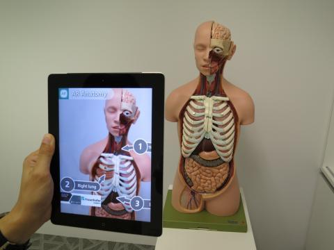 신체 장기도 증강현실 기술을 이용해 어떻게 움직이고 작용하는지를 배울 수 있다. 디지털 교과서는 가상증강현실 기술 등 초몰입 기술을 활용해 종이책으로는 배울 수 없는 영역을 학습하도록 돕는다. ⓒ pixabay