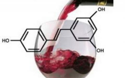 항암 성분인 레스베라트롤의 함량도 와인보다 높은 것으로 밝혀졌다 ⓒ kamuskamu