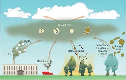 대기의 에어로졸은 여러 휘발 성분이 합쳐지고 반응해 만들어진다. 과거에는 테르펜(terpene) 같은 식물 유래 휘발성유기화합물과 곰팡이 포자(fungal spore) 등이 기원이었지만 인류의 등장으로 땔깜 연기(biomass smoke), 디젤 검댕(diesel soot), 공장 매연 등 미세먼지가 더해지면서 상황이 심각해졌다. 최근 연구에 따르면 식물 유래 휘발성유기화합물의 기여는 생각보다 적은 것으로 보인다. ⓒ 사이언스