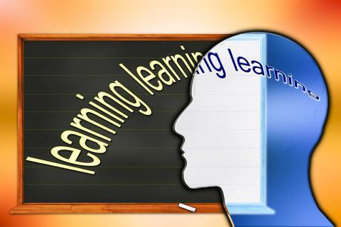 교육이 뇌 구조에서 인지력 성장과 변화에 영향을 미침에도 불구하고 인지 유지에는 거의 기여하는 바가 없는 것으로 나타났다. Credit: Pixabay