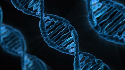 재조합 DNA 기술의 효과를 생각한 생명과학자들은 스스로 관리지침을 만들었다. ⓒ Pixabay