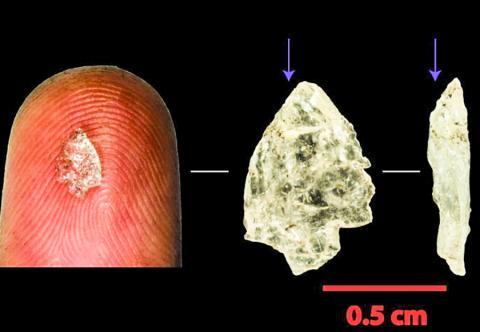 논문 제1저자인 파기터 박사는 남아프리카공화국 붐플라스(Boomcommas)라는 곳에서 나온 이 작은 석영조각을 단초로 석기시대 소형화에 대한 연구를 시작했다.  CREDIT: Justin Pargeter