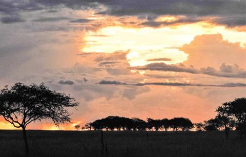 아프리카 탄자니아 세렝게티 국립공원의 세로네라(Seronera) 지역에서 저녁 해가 지는 모습. CREDIT: Han Olff, University of Groningen