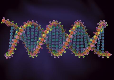 7개국 18명의 과학자 및 윤리학자들이 인간의 생식세포를 이용한 유전자 편집에 대한 모라토리엄을 촉구한다고 밝혀 화제가 되고 있다. ⓒ ScienceTimes