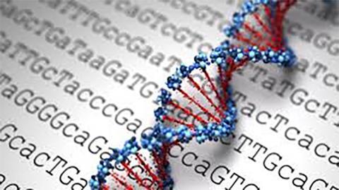 세계적으로 유전자감식을 통해 질병을 예측하려는 사례가 급속히 늘어나면서 변종유전자로 인한 부작용이 제기되고 있다. 현재 의료진은 변종 유전자에 대한 정보를 모두 파악하지 못한 상태다. ⓒmelbournegenomics.org.au