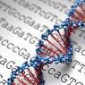 유전자검사 믿을 수 있나?