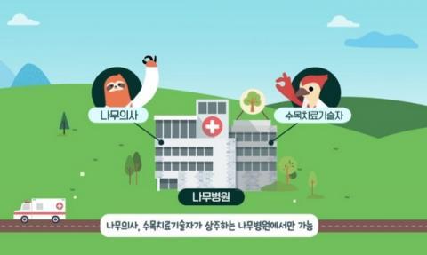 나무의사와 관련된 사업을 수행하기 위해서는 전문 인력을 확보하여 나무병원으로 등록해야 한다 Ⓒ 산림청