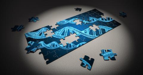 인류는 크리스퍼 유전자 가위를 통해 신의 영역이라 불리는 유전자 편집기술을 완성해가지고 있다. ⓒ 픽사베이