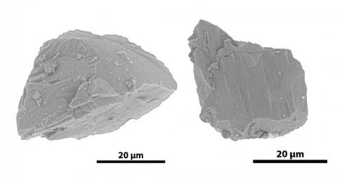 JAXA가 두 연구원에게 제공한 소행성 입자. 머리카락 (100~500미크론) 보다 훨씬 가늘다. ⓒ Z. Jin and M. Bose/ASU/JAXA