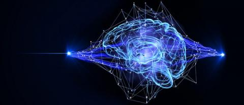 독일 튀빙겐 대학 신경과학자들이 사람의 뇌세포를 모방한 인공신경망(ANN)에 사람이 지니고 있는 '숫자 감각'을 학습시키는데 성공하고 있다. ⓒHRL Laboratories