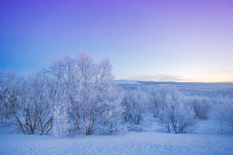 기후온난화가 지속되면 시베리아의 온도는 2080년에 최대 9도가 올라갈 전망이다. 온건하게 예측해도 인간 거주 가능 지역은 5배로 늘어날 것이라고 러시아 과학자들이 발표했다. ⓒ 게티이미지