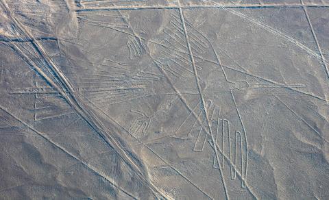 페루 남부 대초원 위에 그려져 있는 거대한 땅그림. 치근 조류학적인 관점에서 실제 새들과 골격을 비교조사한 결과 펠리컨, 앵무새, 갈색 지빠귀 등을 묘사한 것으로 밝혀지고 있다. 사진은 독수리 모양의 땅그림 ⓒWikipedia