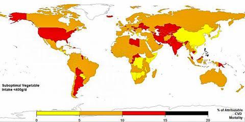 전세계에서 불충분한 채소 섭취(하루 400g 미만)로 인한 심혈관계 사망률 지도. CREDIT: Global Dietary Database 2010/Friedman School of Nutrition Science & Policy at Tufts University