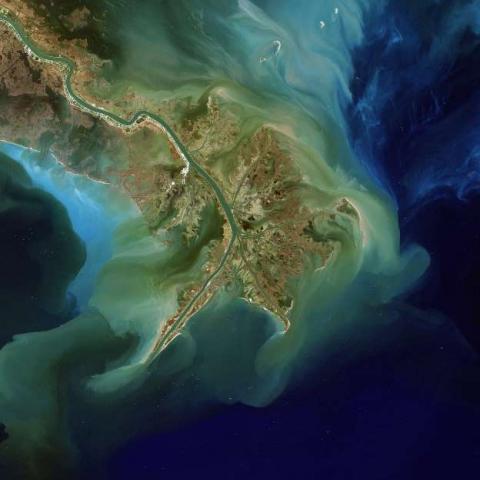 미시시피강을 통해서 멕시코만으로 침전물이 유입된 모습. 그 퇴적물에는 종종 해조류의 번성을 유발하는 비료 오염 물질이 포함되어 있다. © Phil Degginger, NASA Landsat