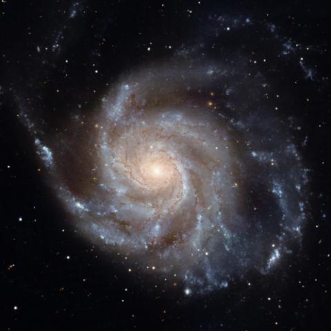 허블 우주망원경으로 관측한 바람개비(Pinwheel)은하의 나선 팔  ⓒ NASA, ESA, CXC, SSC, STScI / 연합뉴스