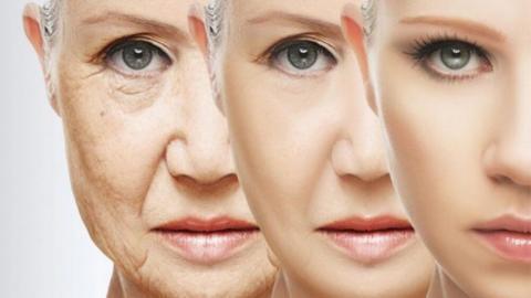 많은 과학자들이 노화의 원인이 되고 있는 생체지표를 찾고 있는 가운데 장수를 열망하는 비과학적인 주장이 난무하고 있어 노인학자들을 고민케 하고 있다. ⓒgeneticliteracyproject.org