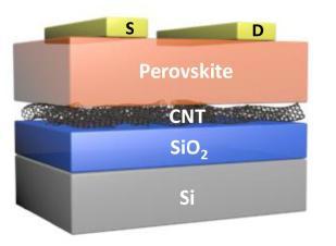 노용영 교수님이 탄소나노튜(CNT)를 이용해 개발한 트렌지스터 ⓒPublic Domain