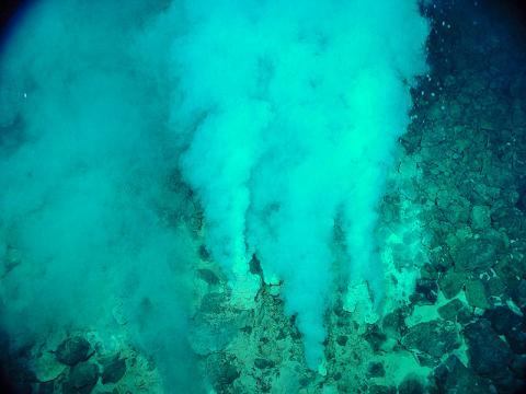 지구상 최초의 생명체는 바다 열수구 침전물에서 발견된 화석화된 미생물로, 42억8000만년 전에 살았던 것으로 추정된다. 지구는 45억4000만년 전, 바다는 44억1000만년 전에 형성된 것으로 알려져 있다. 섭씨 100도 이상의 뜨거운 흰 연기가 솟아나는 태평양 마리아나 해구의 샴페인 분출구(Champagne Vent) 모습.  Credit: Wikimedia / NOAA