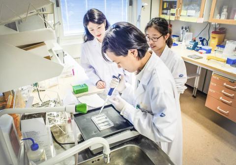 연구원들이 13개 질환 환자들로부터 얻은 T세포를 분석하고 있는 모습. 연구팀은 T세포를 이용해 여러 질병을 조기에 발견하는 것이 가능할 것으로 보고 있다.  CREDIT: Magnus Johansson