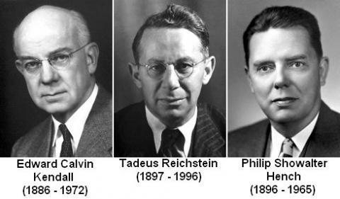 1950년 노벨 생리의학상은 스테로이드 등을 발견한 이들에게 주어졌다. 왼쪽부터 켄들, 라이히슈타인, 필립 헨치 박사. ⓒ 노벨상위원회