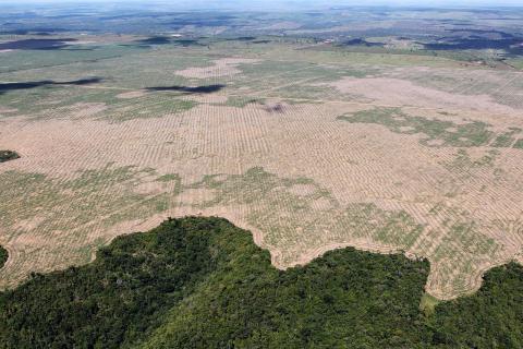 최근 브라질 정부의 친 산업 정책으로 인해 지구 허파로 불리는 아마존 열대우림이 다시 급속히 파괴되고 있다는 위성 데이터가 발표됐다. 아마존 열대우림에서 농지로 개간된 브라질 마라냥 주. ⓒWikipedia