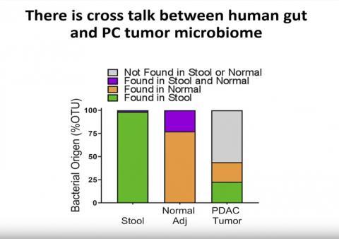 인체 장내 미생물군과 췌장암 종양 미생물군 사이에는 상호 교신이 존재하는 것으로 나타났다.  Credit: Cell Press
