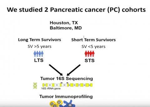 연구팀은 엠디 앤더슨 암센터와 존스 홉킨스 병원 췌장암 환자 장기 생존자와 단기 생존자를 대상으로 연구를 진행했다.  Credit: Cell Press
