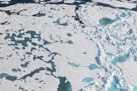 지구에 남은 마지막 원시 환경 중 하나로 알려진 북극까지 미세 플라스틱으로 오염돼 있다는 연구결과가 발표됐다. © Mine Tekman Alfred-Wegener-Institut