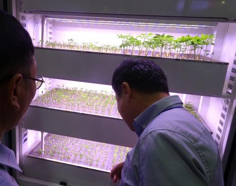 진봉연 선바이오투 대표가 고농도의 산소를 활용한 인삼 재배 방법을 설명하고 있다. ⓒ 김은영/ ScienceTimes