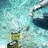 석유를 분해하는 미생물 발견