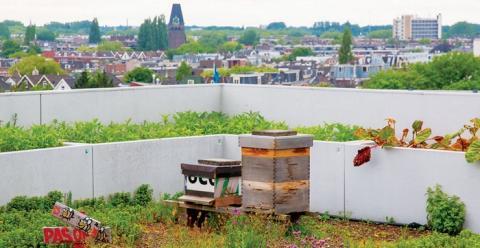 유명 옥상정원인 다카커를 방문하면 허브 사이를 날아다니는 꿀벌을 만날 수 있다  ⓒ urbangreenbluegrids.com
