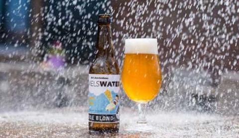 암스테르담에는 옥상에서 빗물을 모아 만든 맥주가 판매되고 있다 ⓒ clc.gov.sg